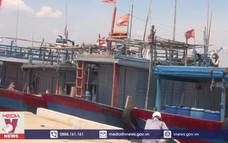 Quảng Nam kêu gọi tàu thuyền về tránh bão số 5