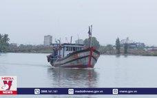 Đà Nẵng đưa tàu cá vào khu vực neo đậu tránh bão