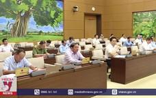 Tiếp tục phiên họp thứ 48, Ủy ban Thường vụ Quốc hội