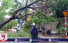 Bão số 5 gây mưa lớn tại Đà Nẵng