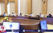 Cho ý kiến về việc thành lập Văn phòng Đoàn ĐBQH và HĐND các tỉnh, thành phố trực thuộc Trung ương