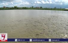 Phát triển sản xuất các khu nuôi trồng thủy sản tập trung
