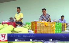 Trái cây Việt thuận lợi xuất khẩu sang Mỹ