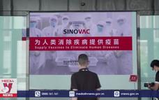 Sinovac muốn mở rộng phân phối vaccine COVID-19 tại Nam Mỹ