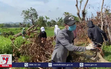 Trả lại thành phố xanh cho tỉnh Thừa Thiên – Huế