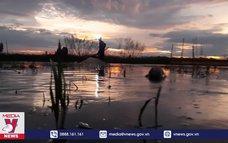 Nghề xúc rận nước mùa nước nổi ở Đồng Tháp