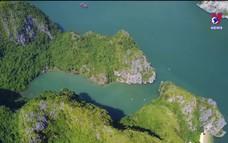 Biên giới Biển đảo quê hương