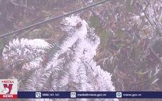 Băng tuyết gây nhiều thiệt hại