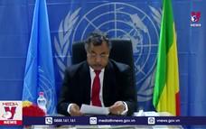 Hội đồng bảo an họp về Mali và Cộng hòa Trung Phi