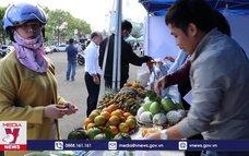 Gia Lai nâng cao giá trị, chất lượng nông sản đặc trưng