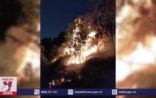 Cháy rừng trồng ở huyện Sóc Sơn, Hà Nội