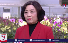 Hoa, cây cảnh Hà Nam sẵn sàng phục vụ Tết