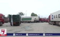 Hàng nghìn xe container mắc kẹt ở cửa khẩu Kim Thành - Lào Cai