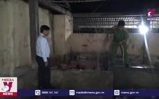 Bắt vụ  lò mổ bơm nước vào lợn trước khi giết mổ