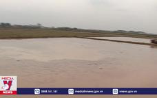 Nhiều địa phương lấy nước đạt mức  thấp