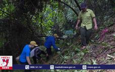 Khởi động chiến dịch Hành trình Việt Nam xanh