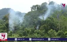 Tuyên Quang chủ động phòng chống cháy rừng