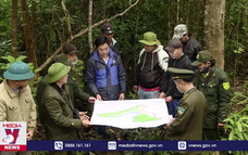 Hưởng lợi từ chính sách chi trả môi trường rừng