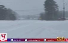 Gần 50 người tử vong vì bão tuyết tại Mỹ