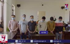 Tuyên án nhóm đối tượng hủy hoại rừng thông tại Đắk Nông