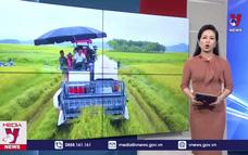 Tuyên Quang phấn đấu 6 xã đạt chuẩn nông thôn mới kiểu mẫu