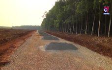 Bình Phước cưỡng chế 2km đường xây dựng trái phép
