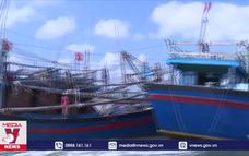Nhiều tàu cá Bình Định mất tín hiệu giám sát hành trình