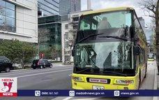 Tour xe buýt ngắm hoa anh đào ở Tokyo
