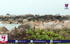 Khánh Hòa thu hồi dự án lấn Vịnh Nha Trang