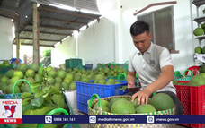 ĐBSCL xây dựng chuỗi nông sản bền vững