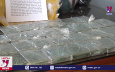 Điện Biên bắt vụ mua bán 30 bánh heroin