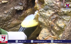 Phát hiện thêm cơ sở xả nước thải xuống sông Mã