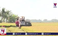 Đồng bào Khmer Sóc Trăng đón Tết Chôl Chnăm Thmây an toàn, tiết kiệm