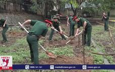 Bộ trưởng Bộ Quốc phòng dự chương trình trồng 1 tỷ cây xanh