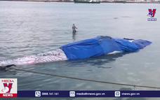 Bình Thuận đưa Cá Ông dài 15m lụy ngoài khơi vào bờ