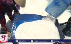 Phát triển bền vững nghề muối Cần Giờ