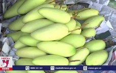 Tăng cơ hội cho xuất khẩu trái cây điMỹ