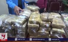 Gần 350 kg ma túy đã bị thu giữ