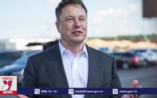 Tỷ phú Elon Musk phát động cuộc thi chống biến đổi khí hậu