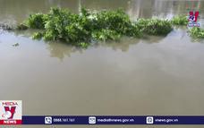 Sạt lở nghiêm trọng bờ Tây sông Ba Rài, Tiền Giang