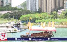 Không khí Tết Đoan Ngọ tại Hong Kong (Trung Quốc)