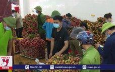 Cam kết tiêu thụ 3.000 tấn vải thiều cho Bắc Giang