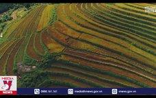 Forbes giới thiệu Lào Cai là kỳ quan thiên nhiên
