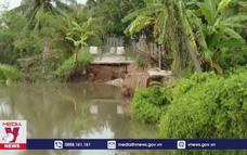 Báo động tình trạng sạt lở sông Rạch Gầm
