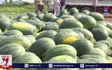 Đưa nông sản vùng dịch vào hệ thống phân phối