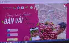 Việt Nam góc nhìn từ thế giới ngày 06/6/2021
