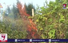 Hà Tĩnh tăng cường phòng chống cháy rừng