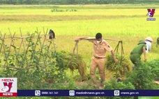 Bắc Giang: Công an huyện Yên Dũng hỗ trợ nhân dân thu hoạch nông sản