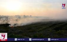 Nam Định tái diễn tình trạng đốt rơm rạ trên đồng