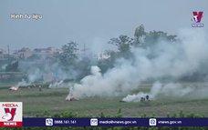 Cảnh báo ô nhiễm không khí vì đốt rơm rạ